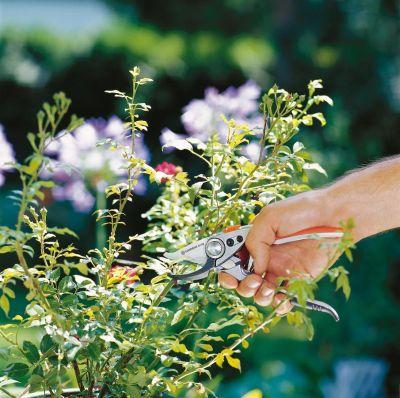 GARDENA Alu Gartenschere Bypass + Handgröße L 08702-20 Bild 2