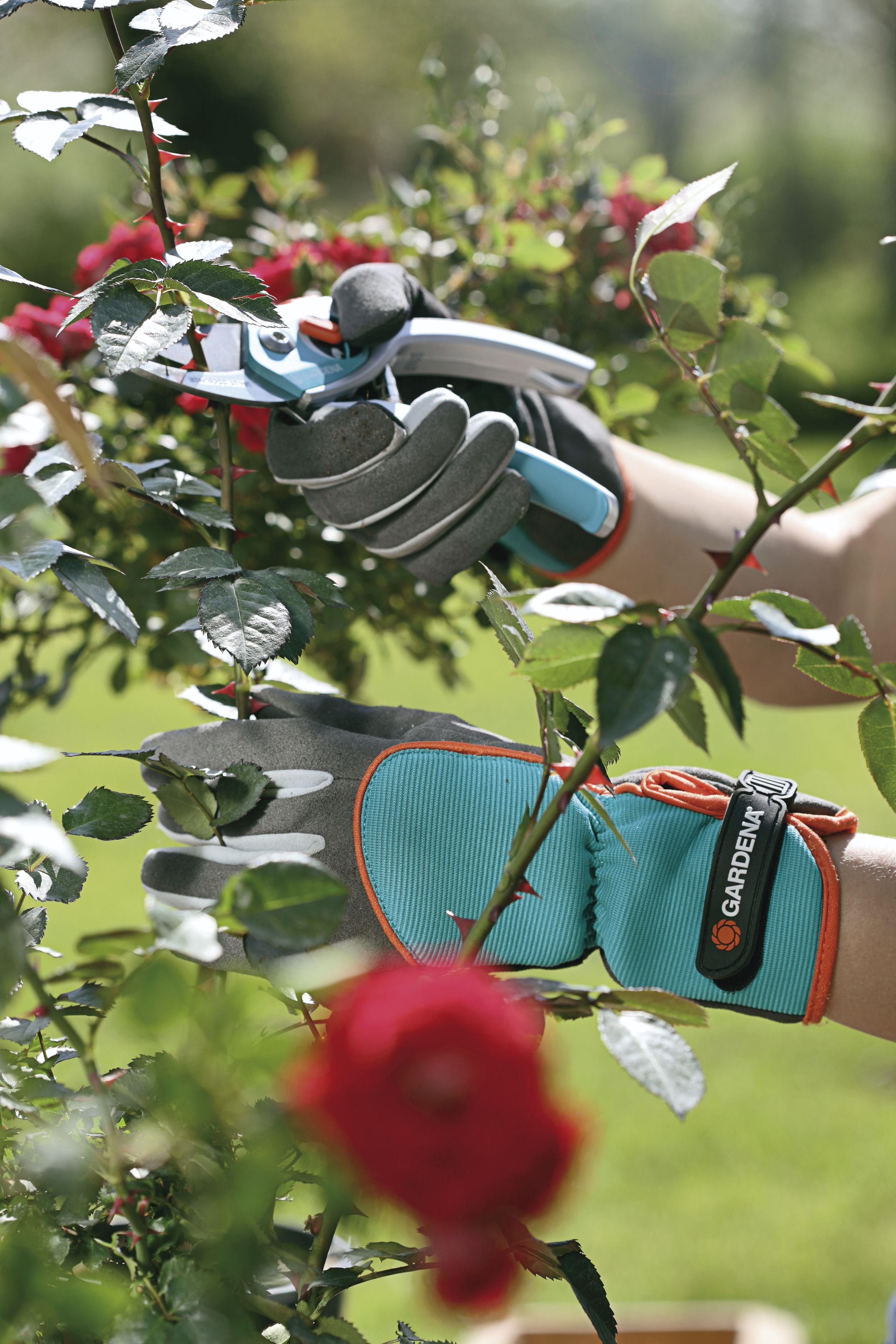GARDENA Strauchpflegehandschuh / Schutzhandschuh Größe 7 / S 00216-20 Bild 2